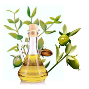 terapias naturales, jojoba, jojoba contra cancer, jojoba cancer