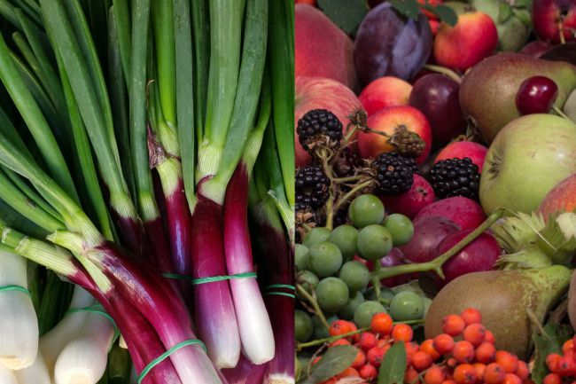 prevenir el cancer, comer fruta, comer verdura