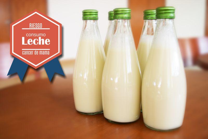 riesgo cancer mama, consumo leche vaca