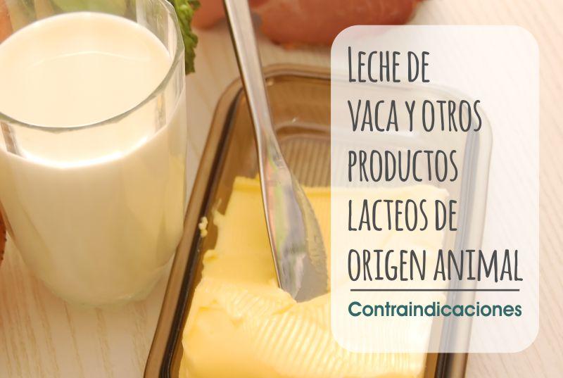 Consejos salud, contraindicaciones leche vaca, productos lacteos