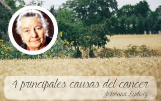 dra johanna budwig, principales causas cancer