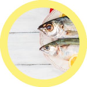 protocolo budwig, vitamina d, cancer, pescado