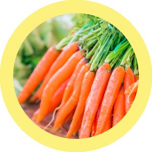 protocolo budwig, vitamina d, cancer, zanahorias