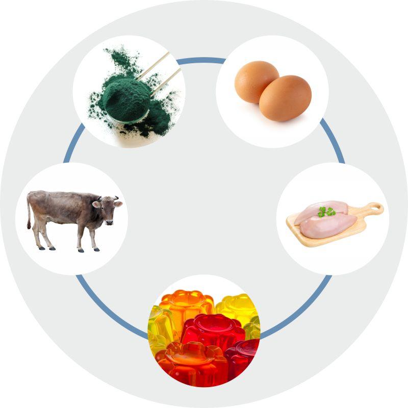 alimentos con colageno, alimentos que lo contienen